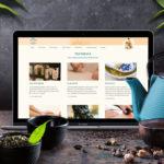 Webdesign Praxis